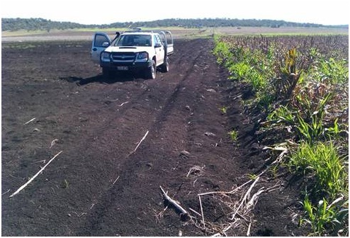 It is estimated that 34 000 tonnes of soil was washed away from this 35 hectare cropping paddock when floodwaters broke through a creek bank in early 2011