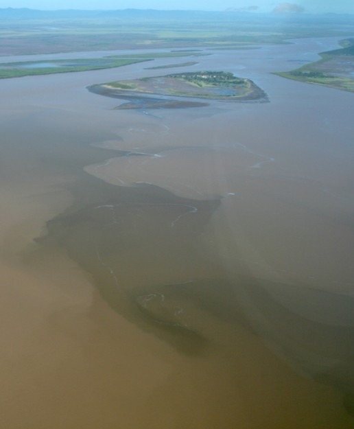 A sediment plume at the mouth of the Fitzroy River after 2008 flooding.