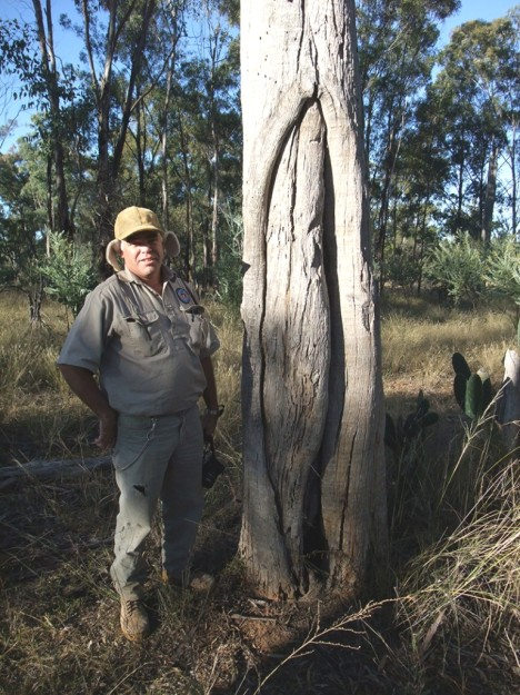 2.Cultural Management Australia Archaeologist Rob Paton with a scar tree found on Ballancar