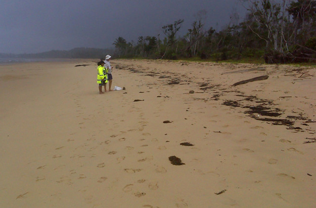 Djiru Traditional Owner Rona Hart with Terrains' Tony O'Malley on the beach looking in to littoral rainforest on Djiru Country