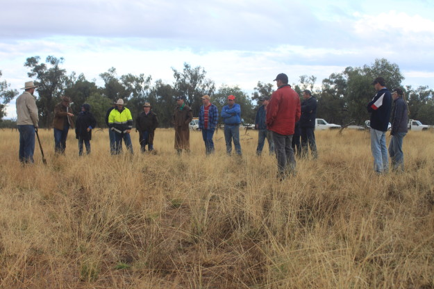 Building skills of graziers in the mulga lands (Image: South West NRM)