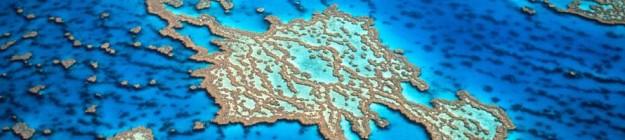 gbr-banner-reef-trust